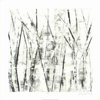 Birches II Fine-Art Print