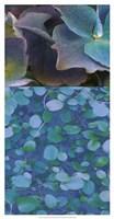 Hydrangea Mix II Fine-Art Print