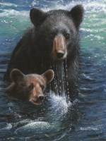 Bearly Swimming Fine-Art Print