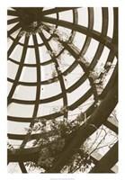 Pergola Basket Fine-Art Print