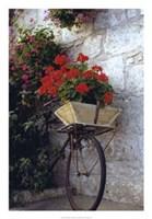 Flower Box Bike Fine-Art Print