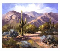 Catalina Mountain Foothills Fine-Art Print