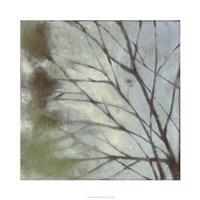 Diffuse Branches I Fine-Art Print