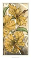 Hibiscus Song II Fine-Art Print