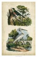 Avian Sanctuary I Fine-Art Print