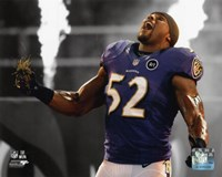 Ray Lewis 2012 Spotlight Action Fine-Art Print