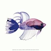 Purple Fish Fine-Art Print