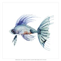 Teal Fish Fine-Art Print
