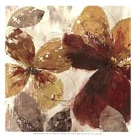 Paloma II - MINI Fine-Art Print