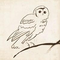 Owl II Fine-Art Print