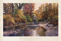 PEACEFUL SHOALS Fine-Art Print