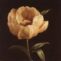 Floral Symposium I Fine-Art Print