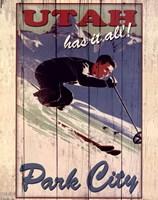 Ski Park City Fine-Art Print