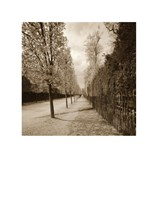 French Jardin Fine-Art Print
