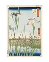 Irises at Horikiri, 1857 Fine-Art Print