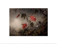 Passion Flowers and Hummingbirds, about 1870-83 Fine-Art Print