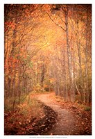 Winding Autumn Path Fine-Art Print