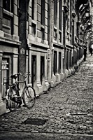 Cobblestone Streets Fine-Art Print