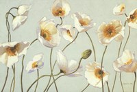 White And Bright Poppies Fine-Art Print