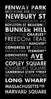 Boston Cities II Framed Print
