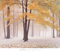 Early Autumn Snow Fine-Art Print