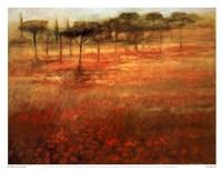 The Forest Afar Fine-Art Print