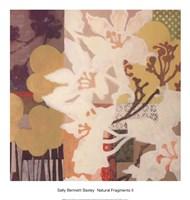 Natural Fragments II Fine-Art Print