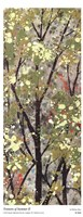 Textures of Summer II Fine-Art Print