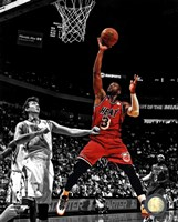 Dwyane Wade 2012-13 Spotlight Action Fine-Art Print