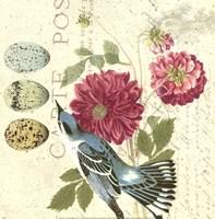 Bird Study 4 Fine-Art Print