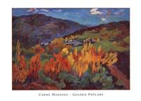 Golden Poplars Fine-Art Print