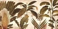Palm Medley Fine-Art Print