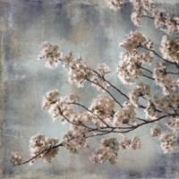 Aqua Blossoms I Fine-Art Print