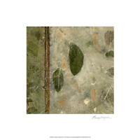 Earthen Textures III Fine-Art Print