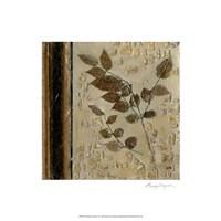 Earthen Textures V Fine-Art Print