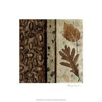 Earthen Textures VI Fine-Art Print