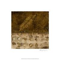 Earthen Textures IX Fine-Art Print