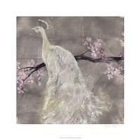 Peacock Serenity II Fine-Art Print
