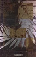 Palm Frond 2 Fine-Art Print