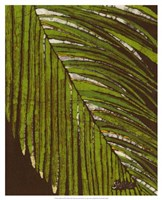 Batik Frond II Fine-Art Print