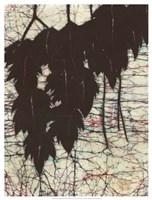 Batik Hanging Leaves I Fine-Art Print