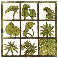 Verde 9-Patch Fine-Art Print