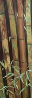 Bamboo Finale I Fine-Art Print