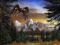 Soaring Eagle Fine-Art Print
