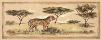 Safari Tiger Fine-Art Print