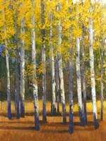 Fall in Glory II Fine-Art Print