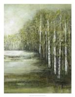 Tranquil Waters II Fine-Art Print