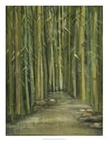 Bamboo Pond Fine-Art Print