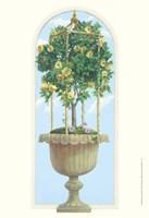 Roses & Obelisk Fine-Art Print