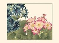 Small Japanese Flower Garden IV Fine-Art Print